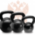 Kettlebell Training, Micro Niche site