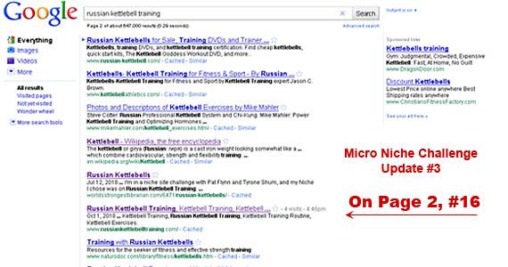 micro-niche-website-challenge